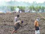 Bauerngruppen stehen sich gegenüber