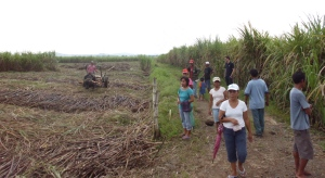 IPON zu Besuch auf Hacienda Carmenchica