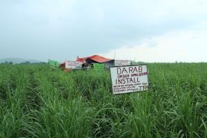 IPON begleitet weiterhin den friedlichen Protest der FarmerInnen